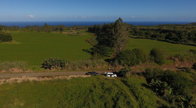 Precision Ag: MIT Students Use Drones to Analyze Soil Nutrient Load at Hamakua Springs